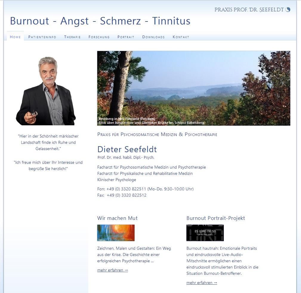 www.prof-seefeldt.de